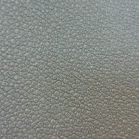 SHAGREEN #70 MEDITATION