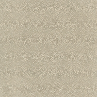 tibiron-shagreen-u421-32-silverplate